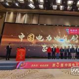 威胜荣获2020年电气行业电能表十大品牌